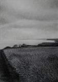 Coastal Path Near Cloughton by Linda Brill, Drawing, Charcoal on Paper
