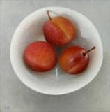 Plums in a Bowl by Linda Brill, Painting, Oil on canvas