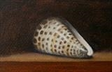Shell by Linda Brill, Painting, Oil on Paper